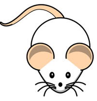 Rat Chinese Horoscope for 2017 will tell you about your future life for the coming year.